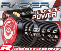 Razer Brushless per 1/5 Big Scale